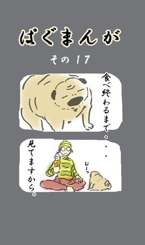 300_43